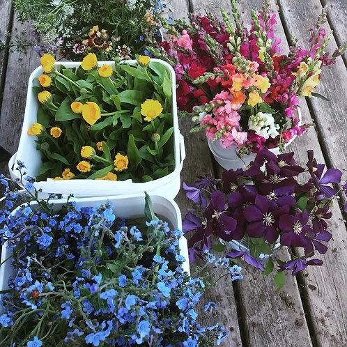 Bulk Flower Pails
