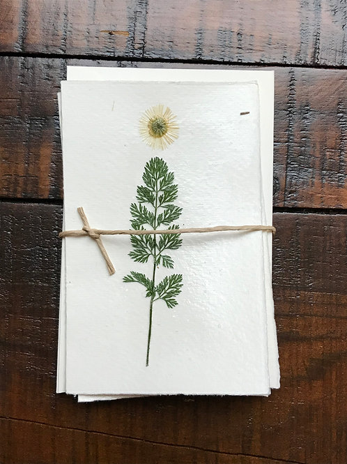 Pressed Flower Christmas Cards