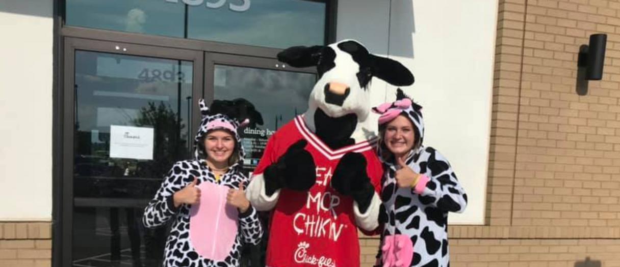 Cow Appreciation Day // 2019