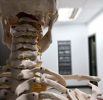 physiotherapy-4099066_1920.jpg