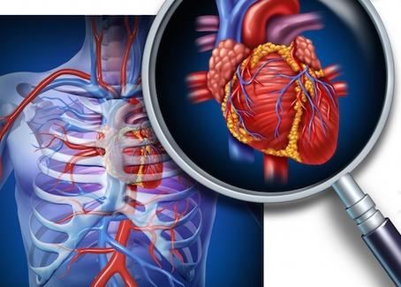 Pilates e as Doenças Cardiovasculares. Saiba como o método atua nesses casos.