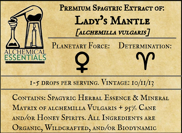 Lady's Mantle Spagyric Tincture