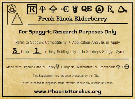 Fresh Black Elderberry Spagyric Tincture