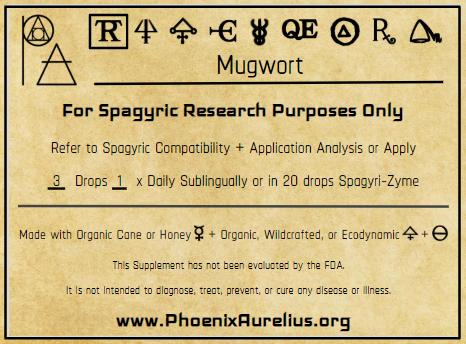 Mugwort Spagyric Tincture