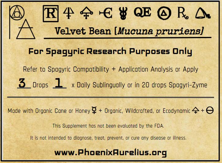 Velvet Bean Spagyric Tincture
