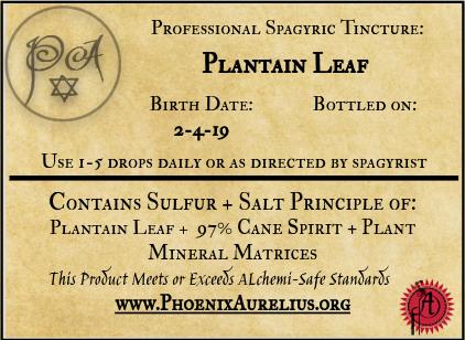 Plantain Leaf Spagyric Tincture
