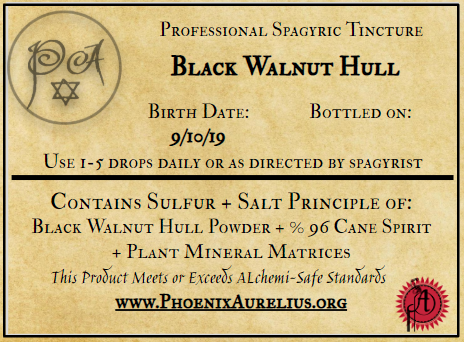 Black Walnut Hull Spagyric Tincture