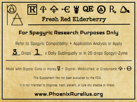 Fresh Red Elderberry Spagyric Tincture