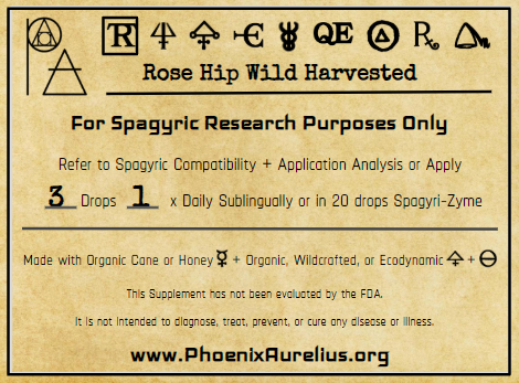 Wild-Harvested Rose Hip Spagyric Tincture