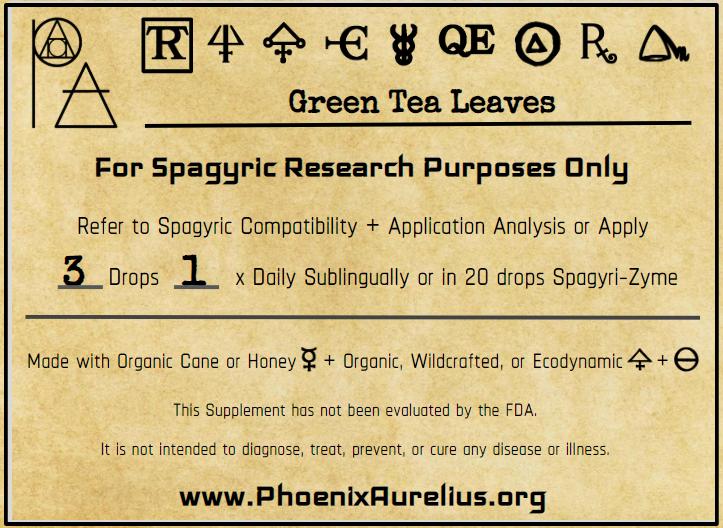 Green Tea Spagyric Tincture