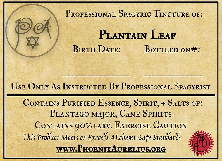 Plantain Spagyric Tincture