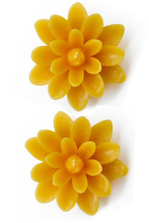 Fleur de Lotus - 2 bougies flottantes