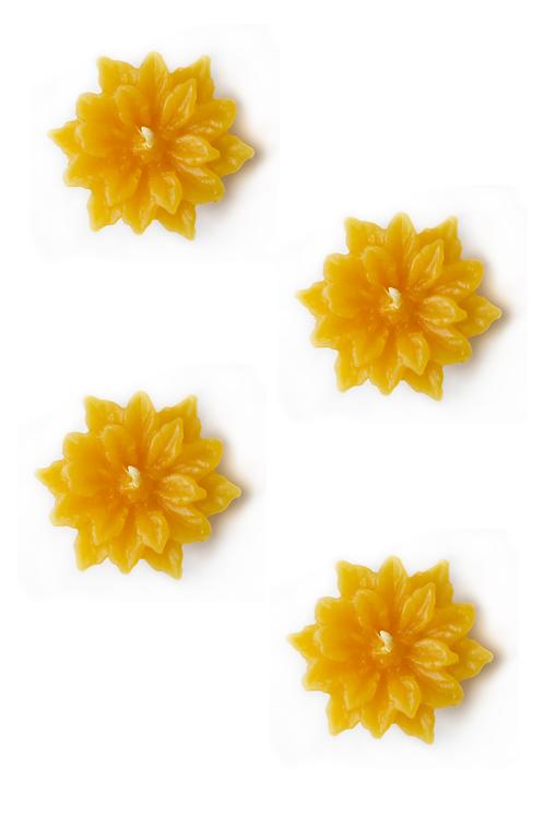 Fleur de Pâque - 4 bougies flottantes
