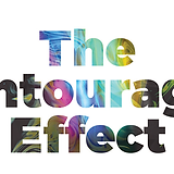 TheEntourageEffect_2.png