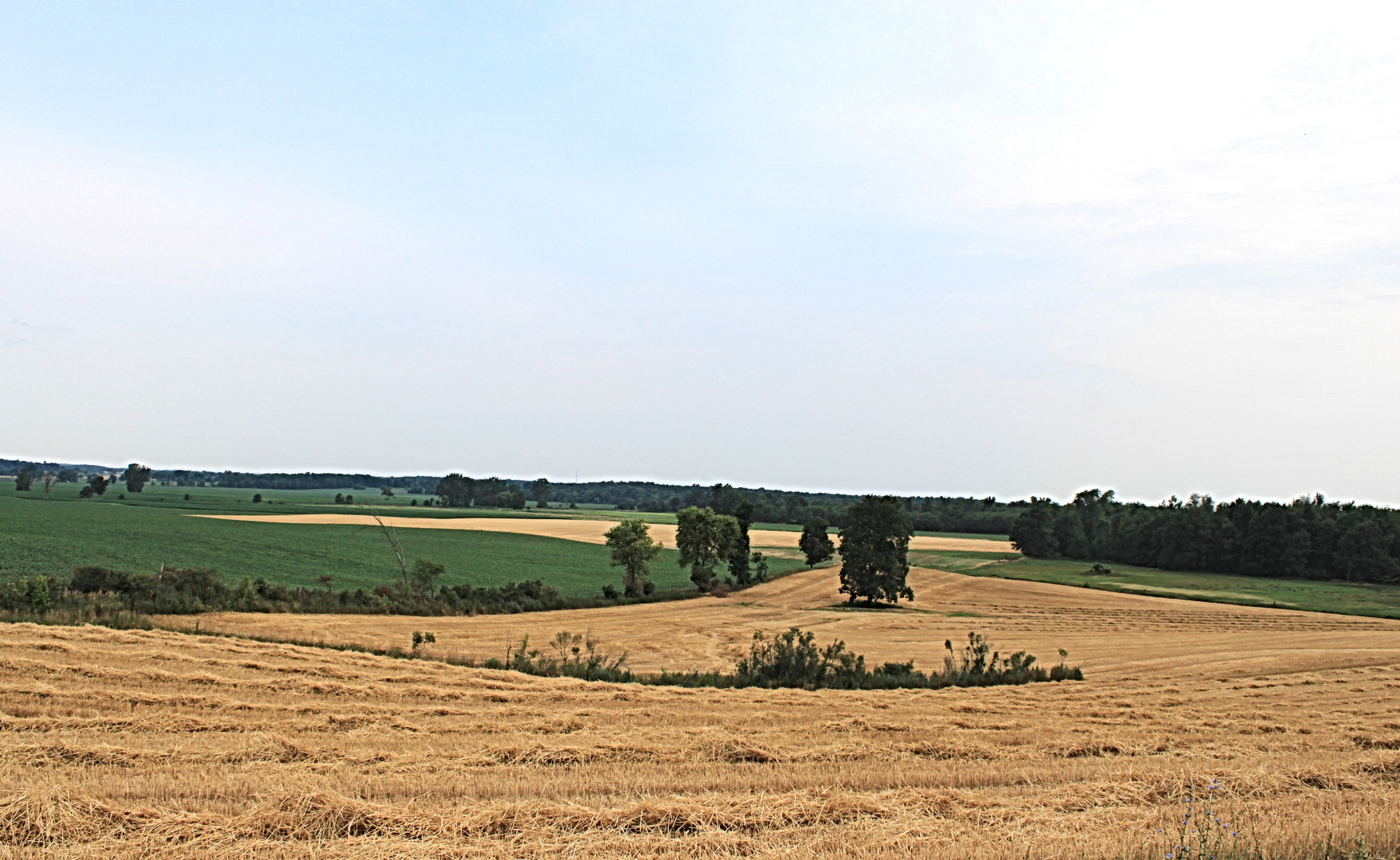 Empire-pic-Farmland.jpg