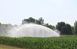 cornfield-irrigation.jpg