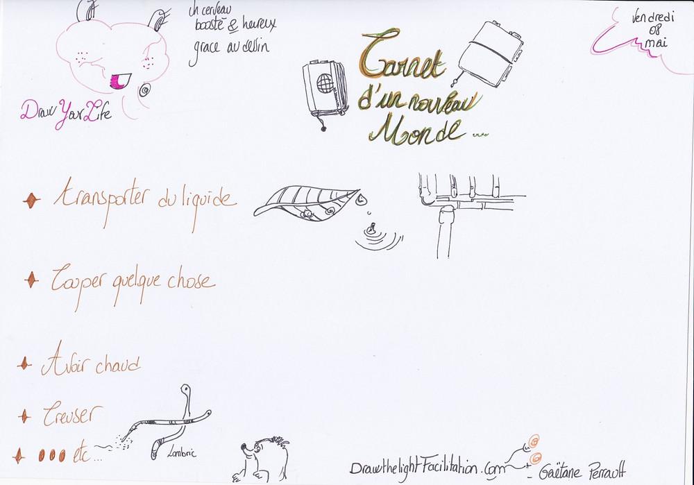 Carnet d'un nouveau monde - DrawthelightFacilitation - Gaëtane Perrault