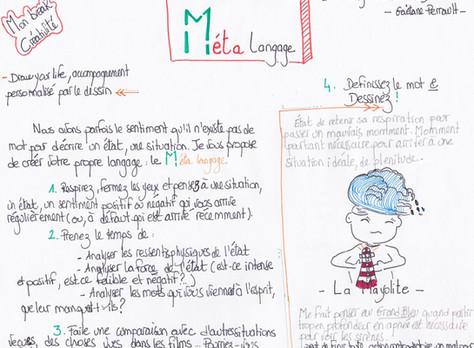Le Meta langage ou le sens collectif des mots