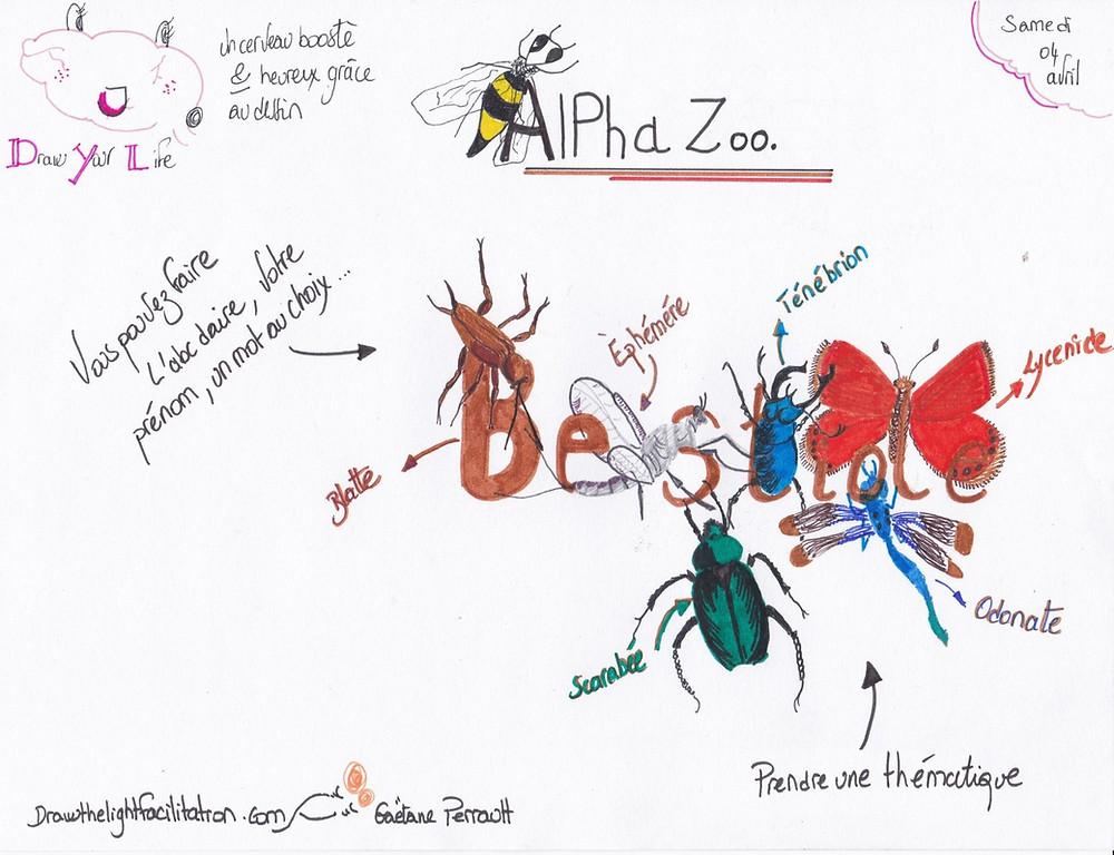Alpha zoo bestiole exercice du 5 avril - Drawthelight facilitation