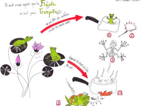 """Le syndrome de la grenouille ou le """"changement dans la continuité"""""""