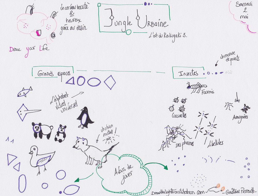 Jungle urbaine le Rakugaki 3- DrawthelightFacilitation - Gaëtane Perrault