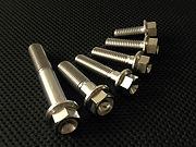 Titanium Hex Flage Bolts