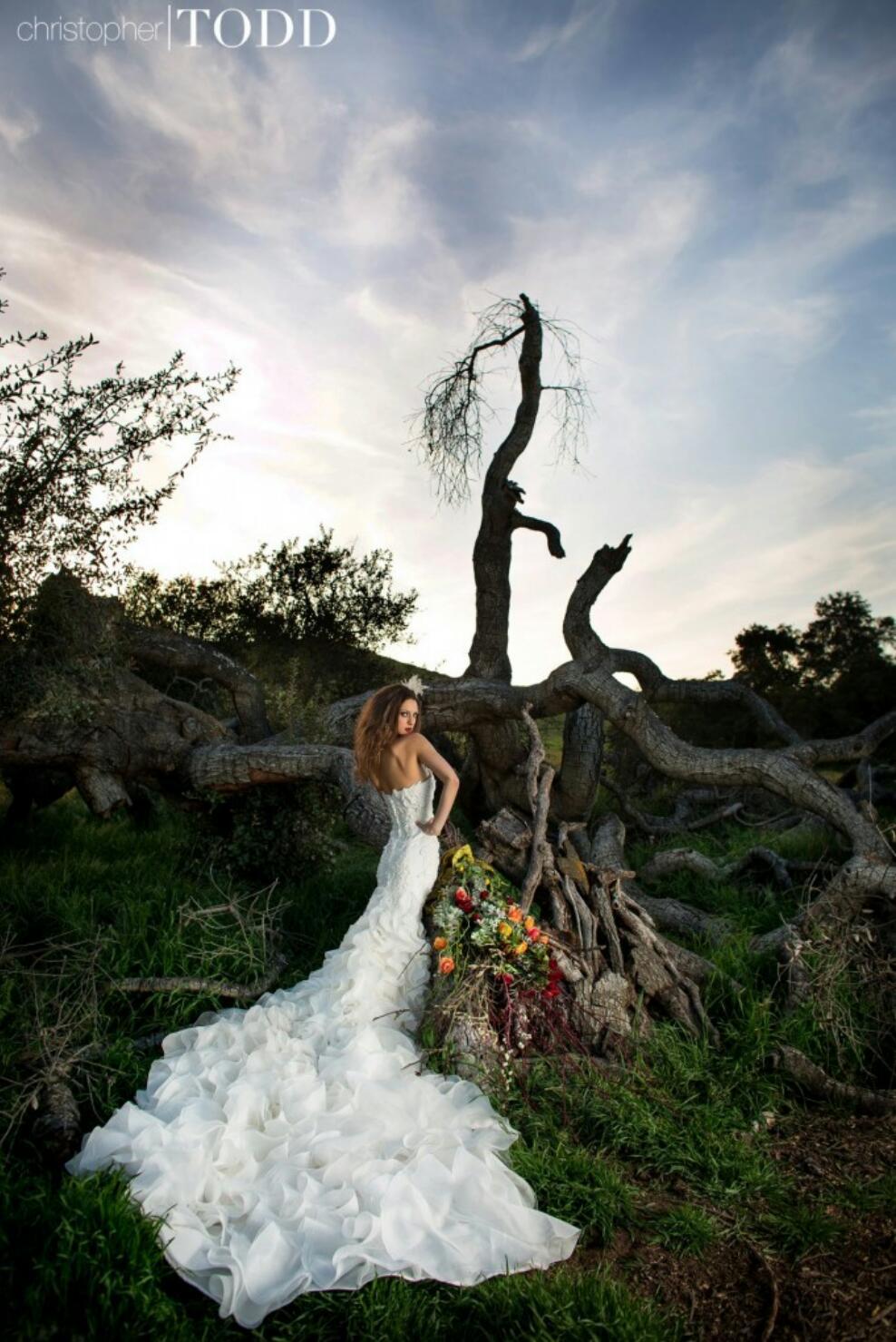 Ladder Bride