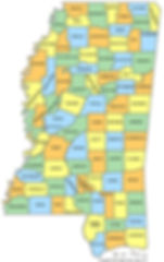 mississippi-county-map.jpg