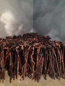1,000 CANES