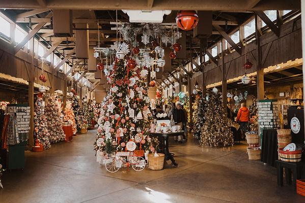 christmas trees in shop.jpg