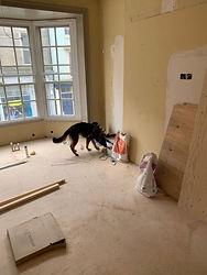 construction site security companies Basingstoke