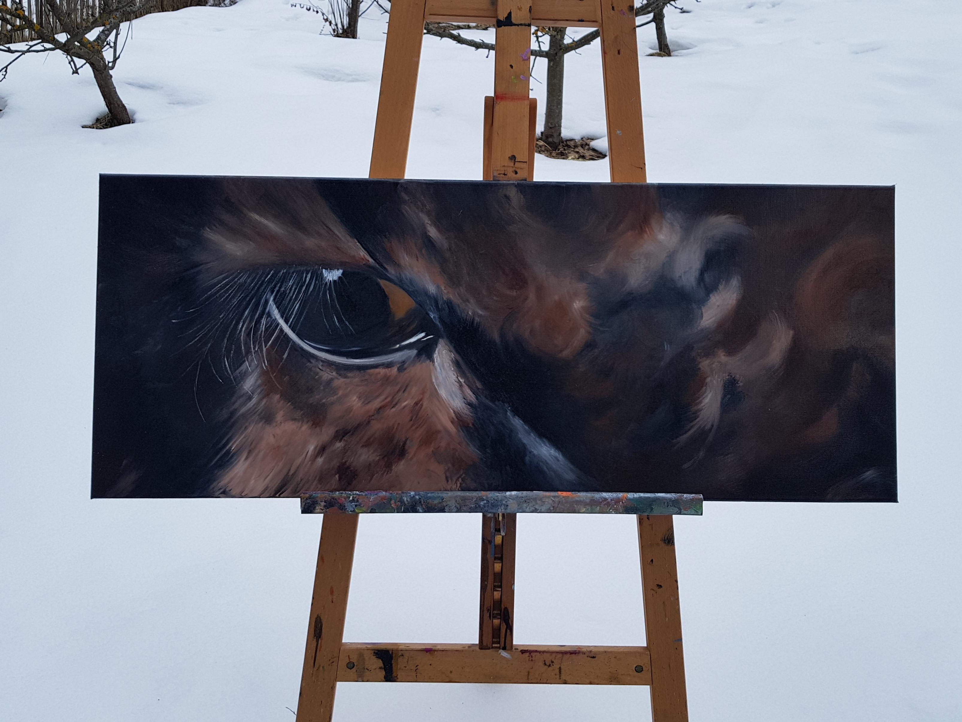 L'oeil vache