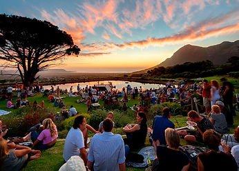 Cape-Point-Vineyards.jpg