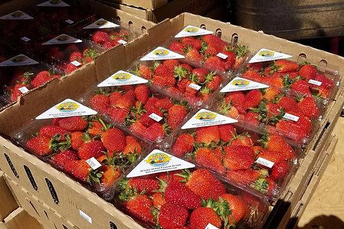 Strawberry 8qt Flat
