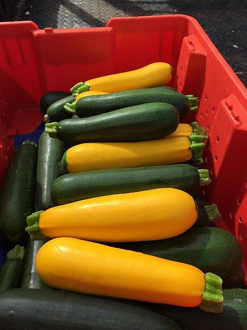 Green Zucchini, 1qt