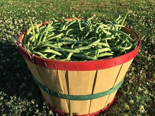 Green Beans 1qt