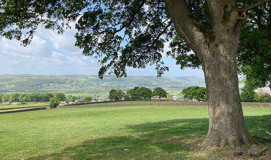View from Tony's field_Down to Hawber La