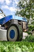 Grass cutting summer lawn lawnmower