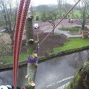 Rigging tree treework hazard utility