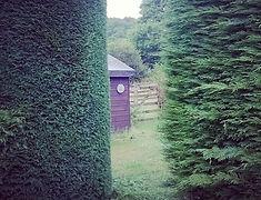 Hedge trimming in garden hedging