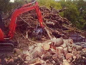 Digger picking up logs