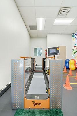 Water treadmill for animal rehabilitation