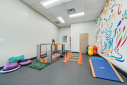 Pet rehabillitation area, gym space
