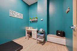 vet and rehab room for animal holistic care
