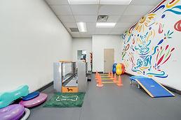 gym space for animal rehabillitation