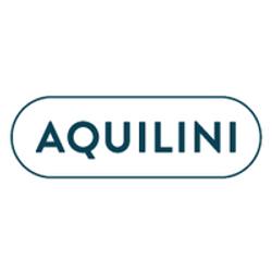 Aquilini Group