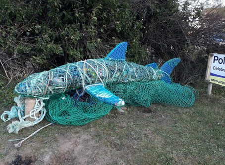 Do you want some info on the new Shark Sculpture?