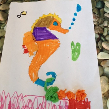 decorator crabs and seashore friends 2017