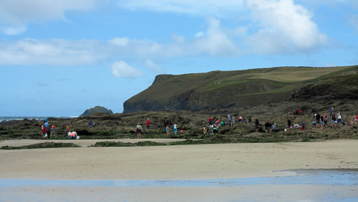 A great turnout for the Rock Pool Ramble