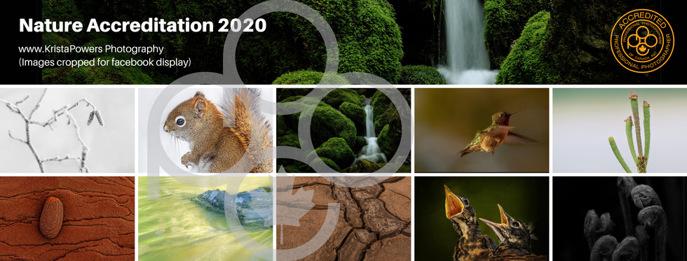 FB Cover Nature Accreditation 2020.jpg